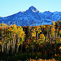 Rocky Mountain Fall by David Lee Thompson