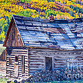Rocky Mountain Rural Rustic Cabin Autumn View by James BO  Insogna