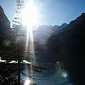 Rocky Mountain Sunshine by David and Mandy