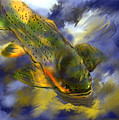 Rocky Mountain Trout  by Jim Fronapfel