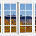 Rocky Mountains Horses White Window Frame View by James BO Insogna