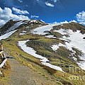 Rocky Mountains Path by Olivier Le Queinec
