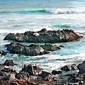 Rocky Ocean Shoreline One by Elaine Plesser