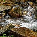 Rocky River 2 by Lydia Holly