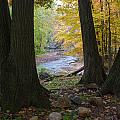 Rocky River Autumn 4 by Frank Tozier
