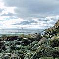 Rocky Sand Beach by Gene Cyr