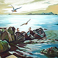 Rocky Seashore And Seagulls by Chris McCullough