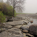 Rocky Shore 4 by Jim Vance