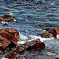Rocky Shoreline - Coast -  Painterly Effects -  Panorama by Barbara Griffin