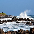 Rocky Shores by Elizabeth Winter
