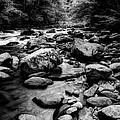 Rocky Smoky Mountain River by Michael Eingle