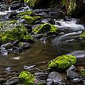 Rocky Stream 03 by Heather Provan