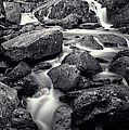 Rocky Stream by Adrian Evans