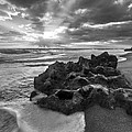 Rocky Surf In Black And White by Debra and Dave Vanderlaan