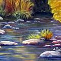 Rocky Waters by Julia RIETZ