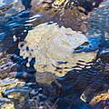 Rocky Waters by Omaste Witkowski