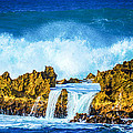 Rocky Waves North Shore by Lisa Cortez