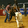 Rodeo 5 by Don Olea