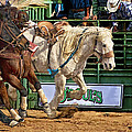 Rodeo Action by Priscilla Burgers