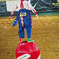 Rodeo Barrel Clown by Alice Gipson