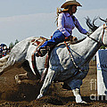 Rodeo Barrel Racer by Bob Christopher