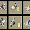 Rodeo Collage 2 by Larry White