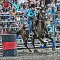 Rodeo Cowgirl by Gary Keesler