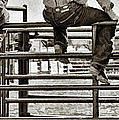 Rodeo Fence Sitters- Sepia by Priscilla Burgers