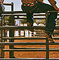 Rodeo Fence Sitters- Warm Toned by Priscilla Burgers
