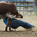Rodeo Getting Down by Bob Christopher