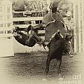 Rodeo Learning To Fly by Bob Christopher