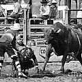 Rodeo Mexican Standoff by Bob Christopher