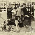 Rodeo Prepared To Be Punished by Bob Christopher