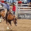 Rodeo Ride by Jon Berghoff