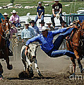 Rodeo Steer Wrestling by Bob Christopher