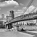 Roebling Bridge by Diana Boyd