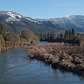 Rogue River And Mt Baldy In Winter by Mick Anderson
