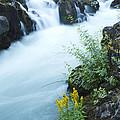 Rogue River Falls 5 by John Brueske