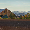 Rogue Valley Barn In Late Afternoon by Mick Anderson