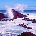 Rogue Wave by Dena Baker