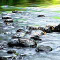 Rolling Brook by Optical Playground By MP Ray