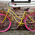 Rolling On Pink by Christopher Holmes