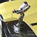 Rolls Royce Hood Ornament by Pamela Walrath