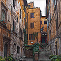 Roman Backyard by Hanny Heim