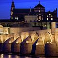 Roman Bridge And Mezquita In Cordoba At Dawn by Artur Bogacki