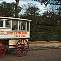 Roman Candy Wagon New Orleans by Kathleen K Parker