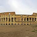 Roman Colosseum  by Tony Murtagh