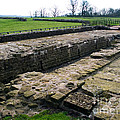 Roman Fort Ruins, England by Tim Holt