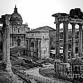 Roman Forum At Sunrise by Anthony Festa