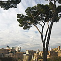 Roman Forum by Louise Fahy